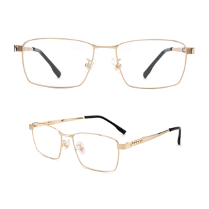 Titanium Optical Eyewear Frame Designer Titanium Eyeglasses/Eye Glasses for Men